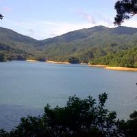 Kwai Tsing District-20120902-00446